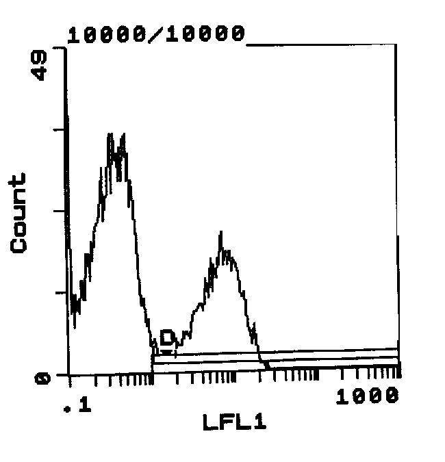 RT1.Bu Antibody (MA5-17416)