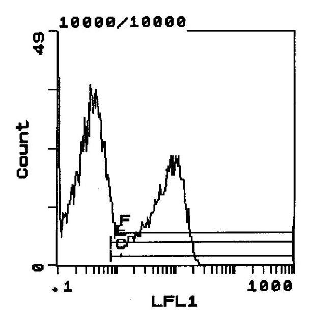 RT1.B Antibody (MA5-17428) in Flow Cytometry