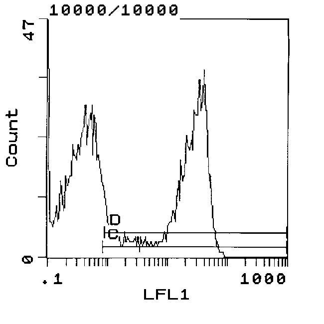 RT1.D Antibody (MA5-17437) in Flow Cytometry