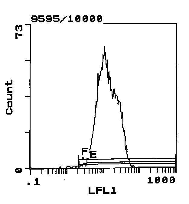 RT1.Ac Antibody (MA5-17465)