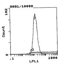 RT1.Ac Antibody (MA5-17467) in Flow Cytometry