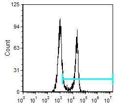 CD8 alpha Antibody (MA5-17598) in Flow Cytometry