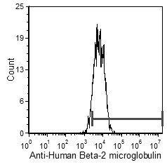 beta-2 Microglobulin Antibody (MA5-17683)