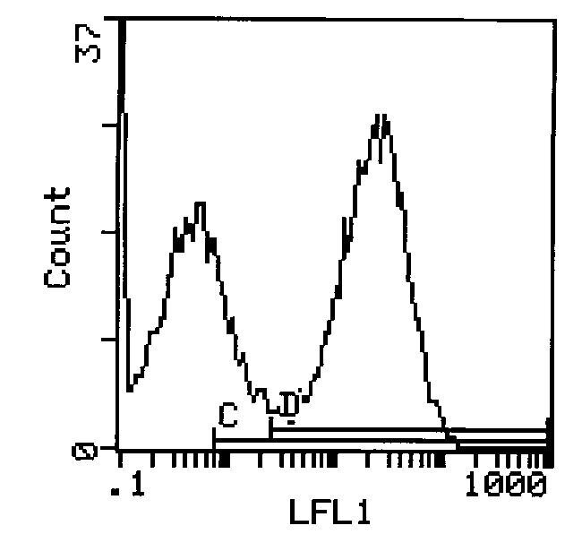 I-Ek Antibody (MA5-17762) in Flow Cytometry