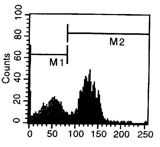 CD40 Antibody (MA5-17853) in Flow Cytometry