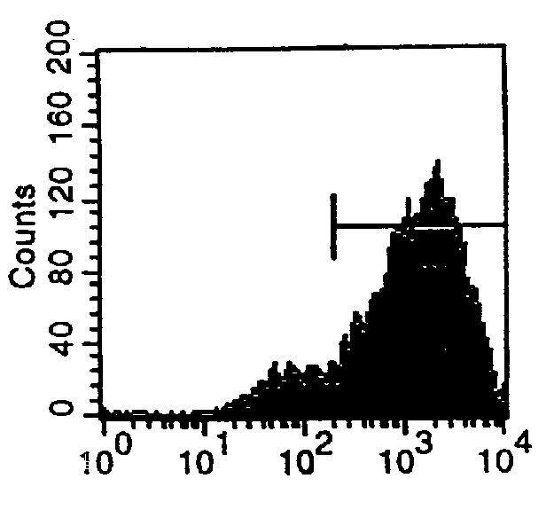 Transferrin Receptor Antibody (MA5-17923) in Flow Cytometry