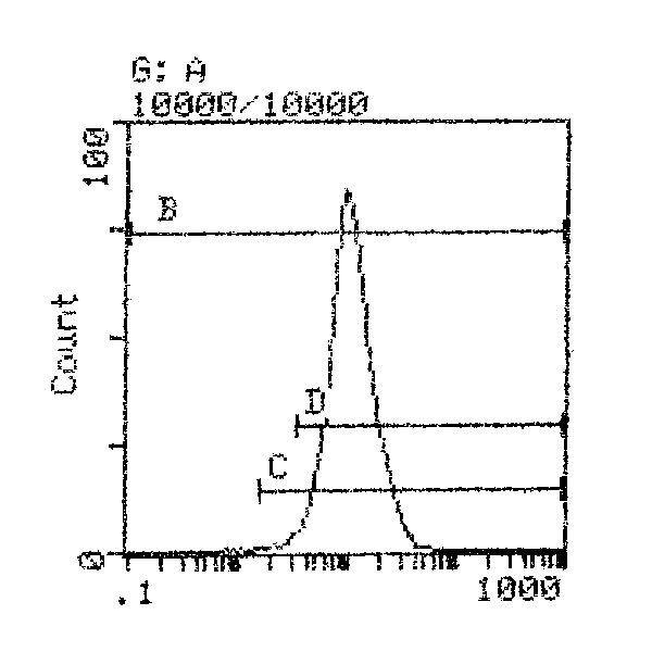 H-2Dd Antibody (MA5-18002)