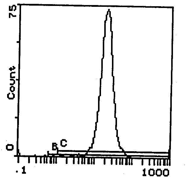H-2Dd Antibody (MA5-18003) in Flow Cytometry