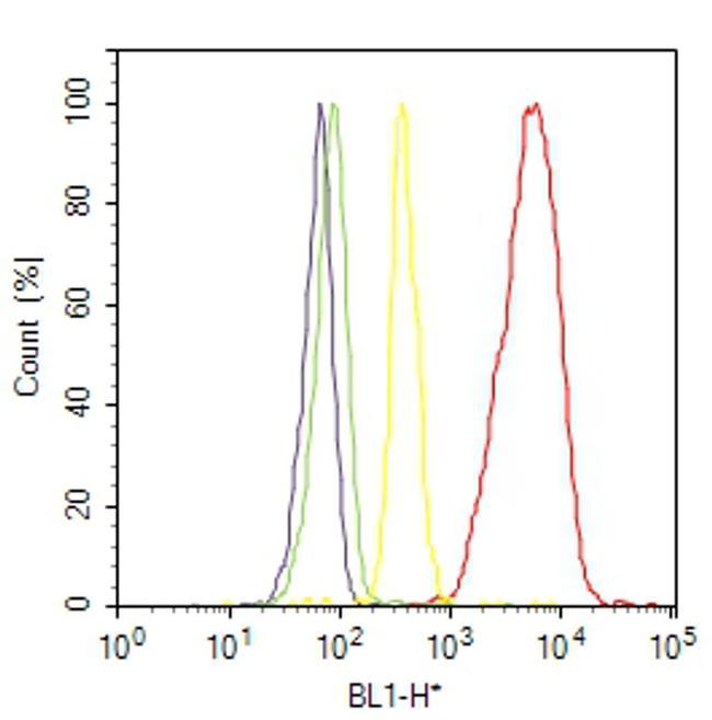 GLUT1 Antibody (MA5-11315) in Flow Cytometry