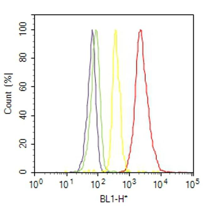 Caspase 3 Antibody (MA5-11516) in Flow Cytometry