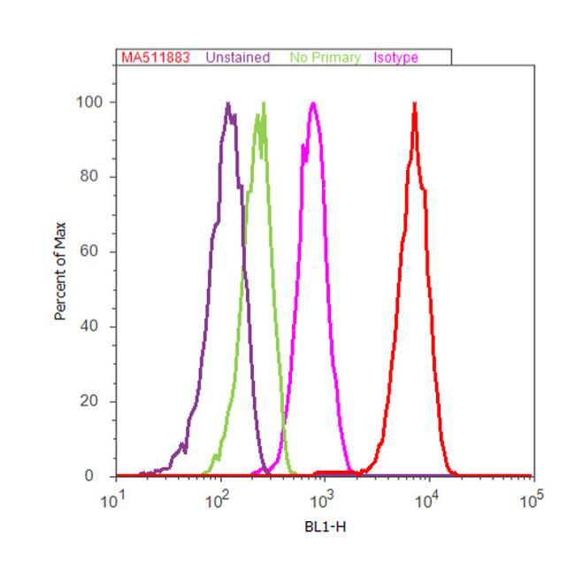 Vimentin Antibody (MA5-11883) in Flow Cytometry