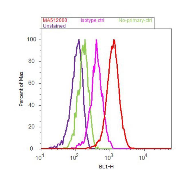 XPF Antibody (MA5-12060) in Flow Cytometry
