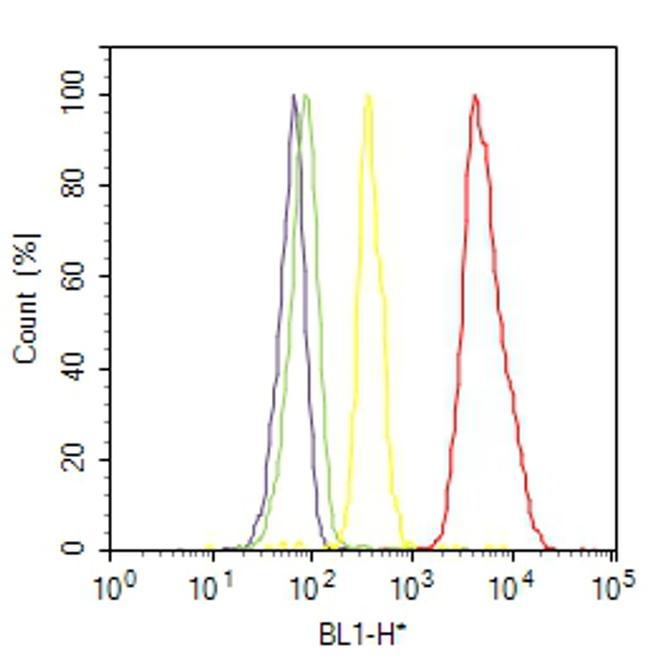 VWF Antibody (MA5-14029) in Flow Cytometry