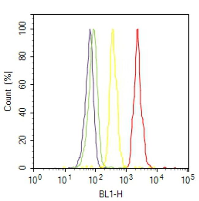 p53 Antibody (MA5-14067) in Flow Cytometry
