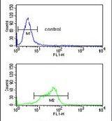 MAGT1 Antibody (PA5-24978) in Flow Cytometry