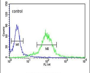 MAML3 Antibody (PA5-13678) in Flow Cytometry