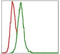 MEK7 Antibody (MA5-15925) in Flow Cytometry