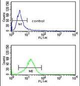 PRAME Antibody (PA5-13679) in Flow Cytometry