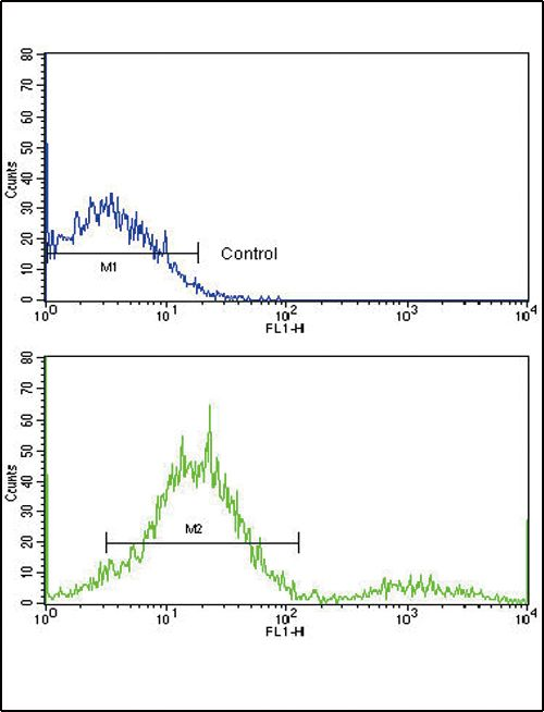 MCL1 Antibody (PA5-11389) in Flow Cytometry