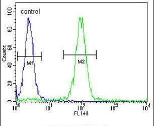 MEIS2 Antibody (PA5-25432) in Flow Cytometry