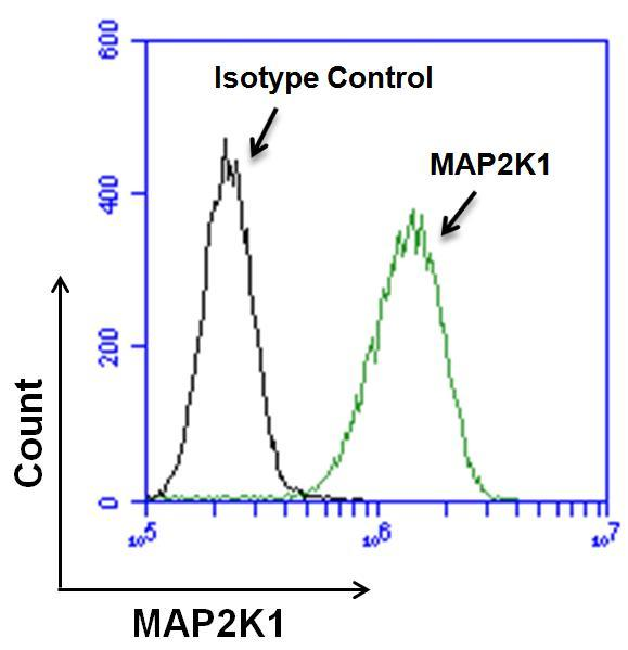 MEK1 Antibody (MA1-095) in Flow Cytometry