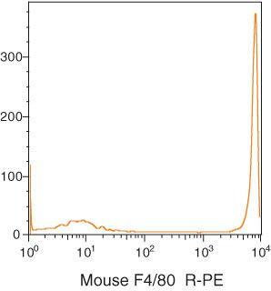 F4/80 Antibody (MF48004)