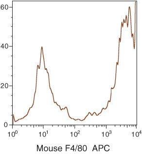 F4/80 Antibody (MF48005)