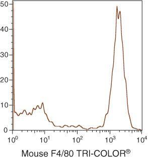 F4/80 Antibody (MF48006)