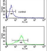 MFAP5 Antibody (PA5-14204) in Flow Cytometry