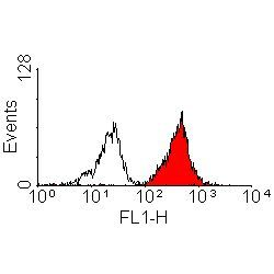 HLA-A2 Antibody (MA1-80117) in Flow Cytometry