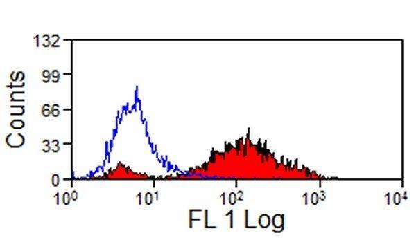 MHC II Monomorphic Antibody (MA1-81201) in Flow Cytometry