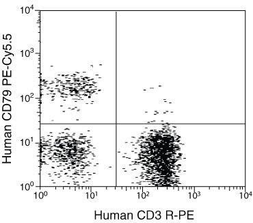 CD3d / CD3 delta Antibody (MHCD0304)