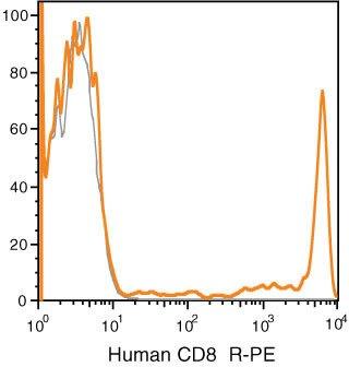 CD8 Antibody (MHCD0804)