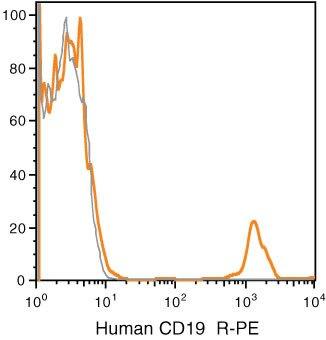 CD19 Antibody (MHCD1904)
