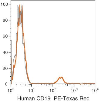 CD19 Antibody (MHCD1917)