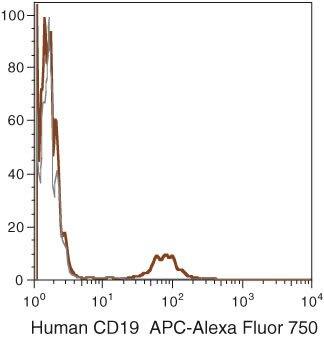 CD19 Antibody (MHCD1927)