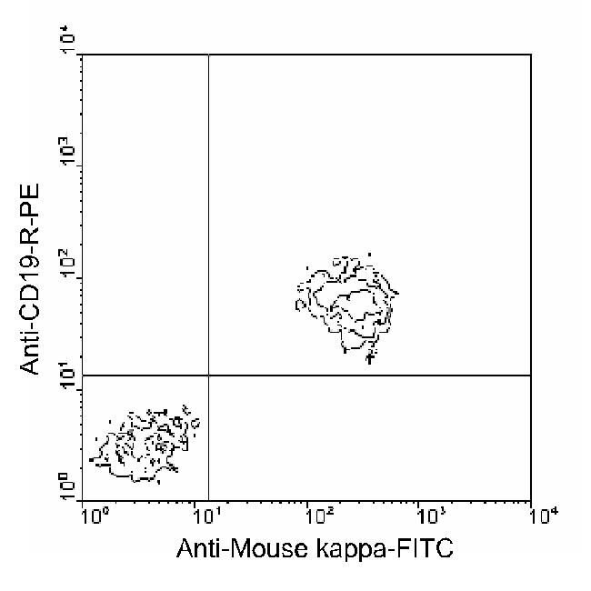 Mouse Kappa Light Chain Secondary Antibody (MKAPPA01) in Flow Cytometry