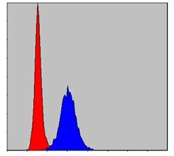 MMP9 Antibody (MA5-15886) in Flow Cytometry