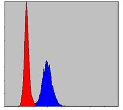 MMP9 Antibody (MA5-15888) in Flow Cytometry