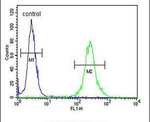 MRAP Antibody (PA5-26979) in Flow Cytometry