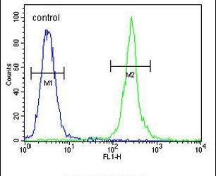MRM1 Antibody (PA5-23887) in Flow Cytometry