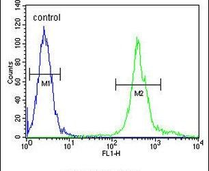 MRPS24 Antibody (PA5-23999) in Flow Cytometry