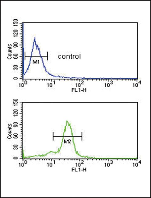 MSRA Antibody (PA5-14206) in Flow Cytometry