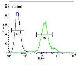 MTX2 Antibody (PA5-24284) in Flow Cytometry
