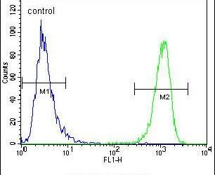 MUC20 Antibody (PA5-14973) in Flow Cytometry