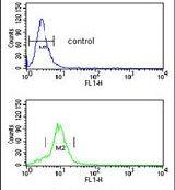 MUTYH Antibody (PA5-26167) in Flow Cytometry