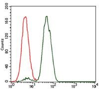 NCK1 Antibody (MA5-17132) in Flow Cytometry