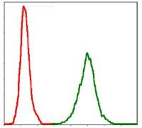 NEFL Antibody (MA5-17135) in Flow Cytometry
