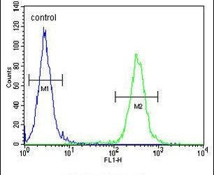 NKPD1 Antibody (PA5-24399) in Flow Cytometry