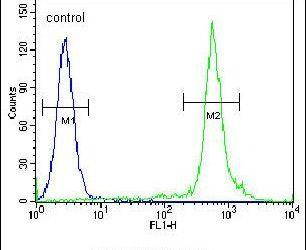 Nkx2.1 Antibody (PA5-25940) in Flow Cytometry